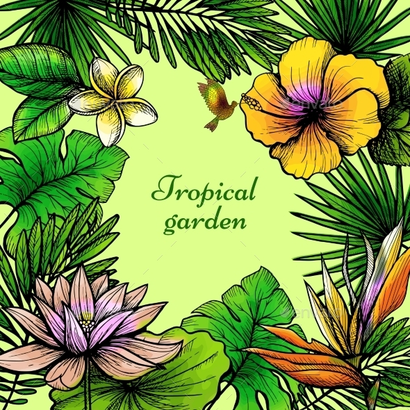 Tropical Leaves Frame - Flowers & Plants Nature