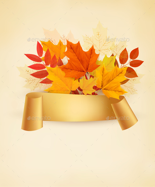 Autumn Banner Background With Colorful Leaves  - Seasons Nature