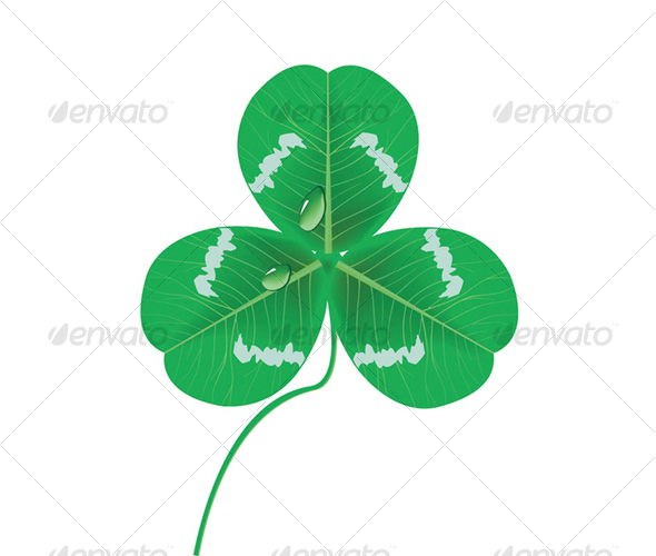 Clover leaf with drop - Flowers & Plants Nature