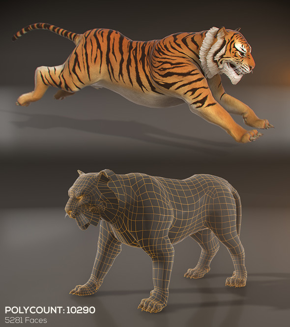 Animated Tiger - Low Poly - 3DOcean Item for Sale