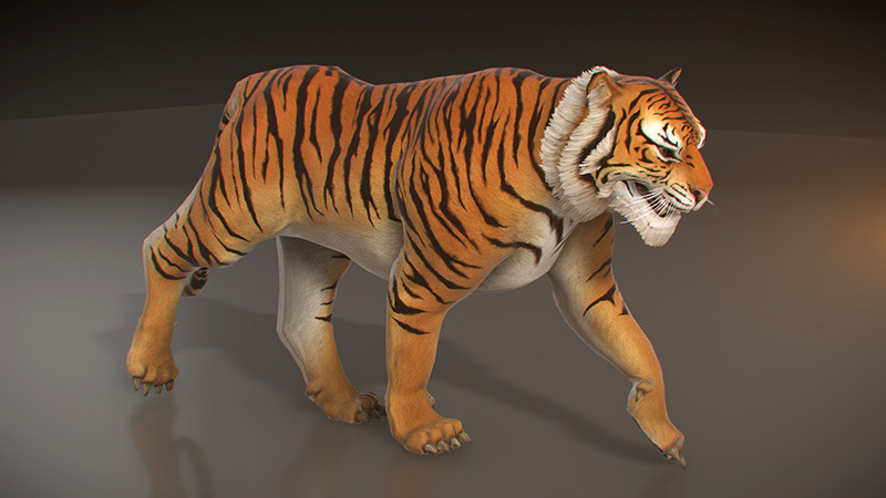Animated Tiger Low Poly By Pixelgem 3docean