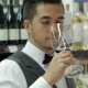 Confident And Experienced Sommelier - VideoHive Item for Sale