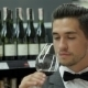 Sommelier Examining Wine - VideoHive Item for Sale