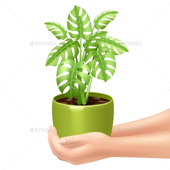 Holding a Houseplant Illustration  - Flowers & Plants Nature