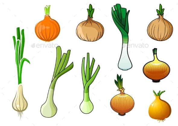 Onion Bulbs And Leek Vegetables - Food Objects