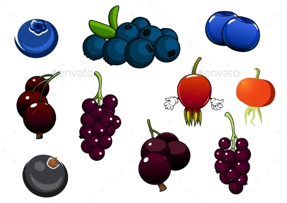 Fresh Blueberries, Blackcurrant And Briars Fruits - Food Objects