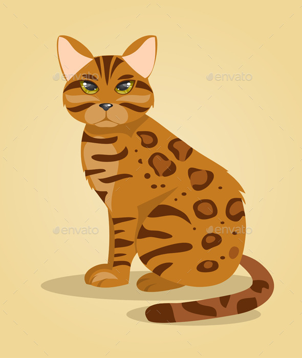 Bengal Cat - Animals Characters