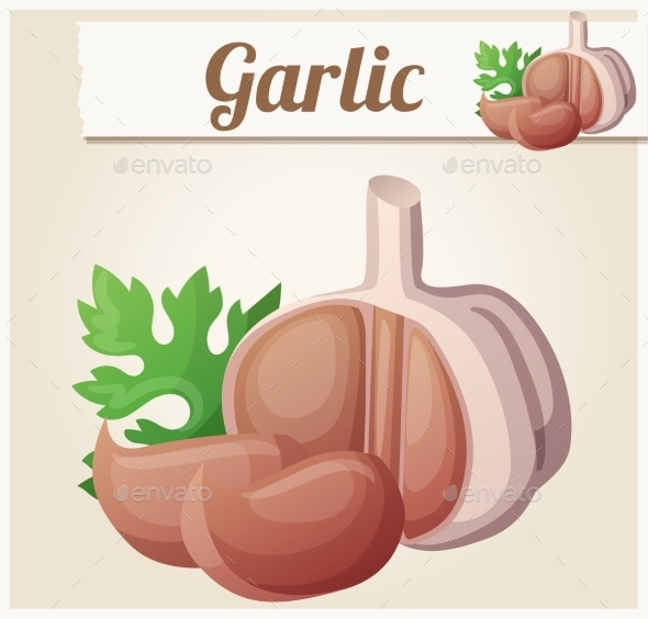 Garlic. Detailed Vector Icon - Food Objects