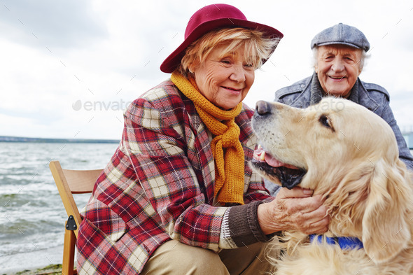 Affectionate friends - Stock Photo - Images