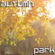Autumn Park - VideoHive Item for Sale