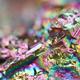 14 JPG files Multi-coloured Background