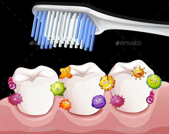 Bacteria Between Teeth When Brushing - Miscellaneous Conceptual