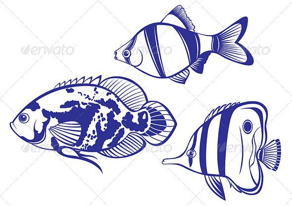 Tropical Fish - Characters Vectors