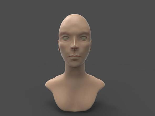 basic female head sculpt