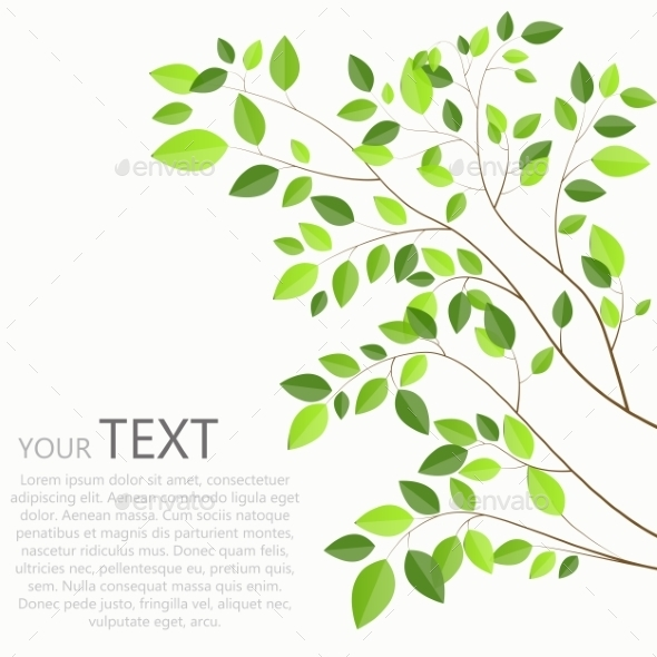 Beautiful Green Tree On a White Background Vector - Objects Vectors