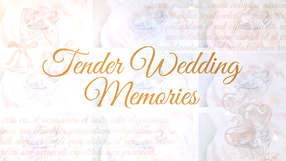 Tender Wedding Memories