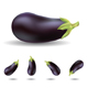 eggplant - GraphicRiver Item for Sale