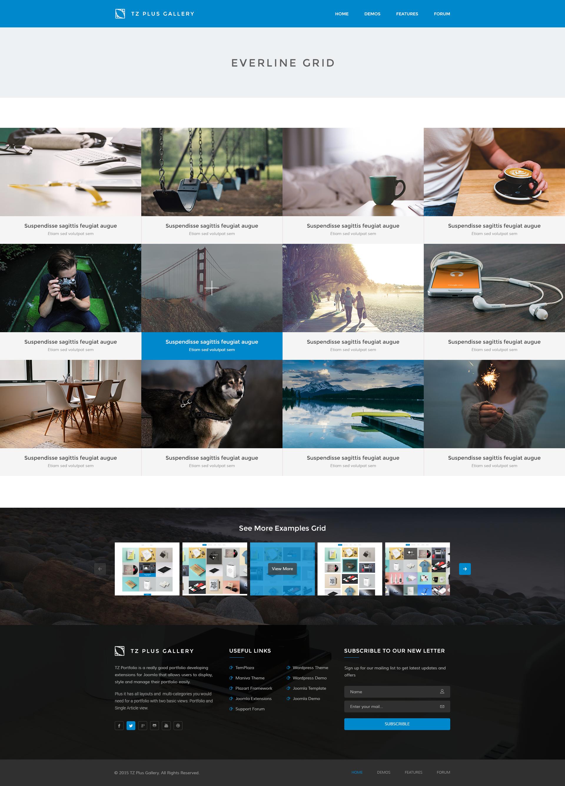TZ Plus Gallery WordPress Social Gallery Plugin