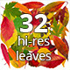 32 hi-res Isolated autumn leaves PSD - GraphicRiver Item for Sale