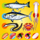 Japanese Sushi Fishes Sashimi - GraphicRiver Item for Sale