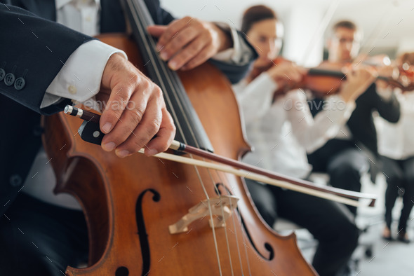 Cello player's hands close up - Stock Photo - Images
