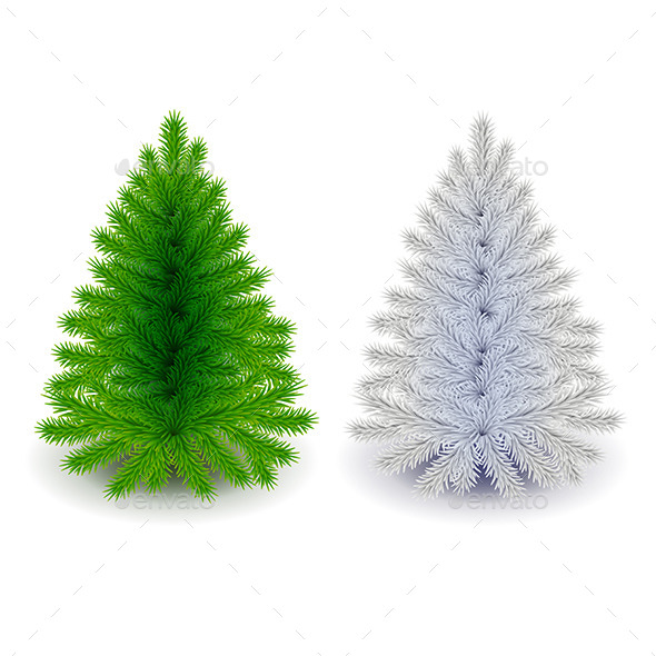 Green and White Christmas Tree Isolated on White - Christmas Seasons/Holidays