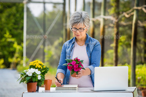 Working in a flower shop - Stock Photo - Images