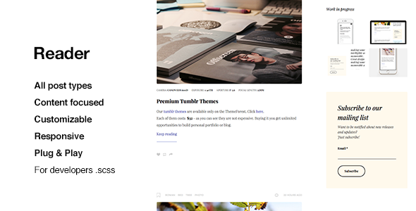 Reader, Top Quality Blogging Tumblr Theme