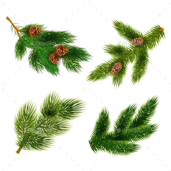 Fir and Pine Trees Branches Icons Set  - Christmas Seasons/Holidays