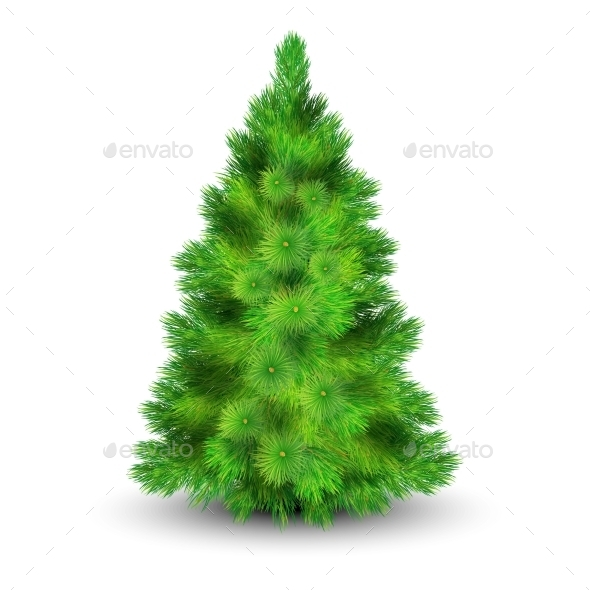 Christmas Tree Illustration  - Christmas Seasons/Holidays