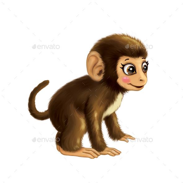 Monkey  - Animals Illustrations