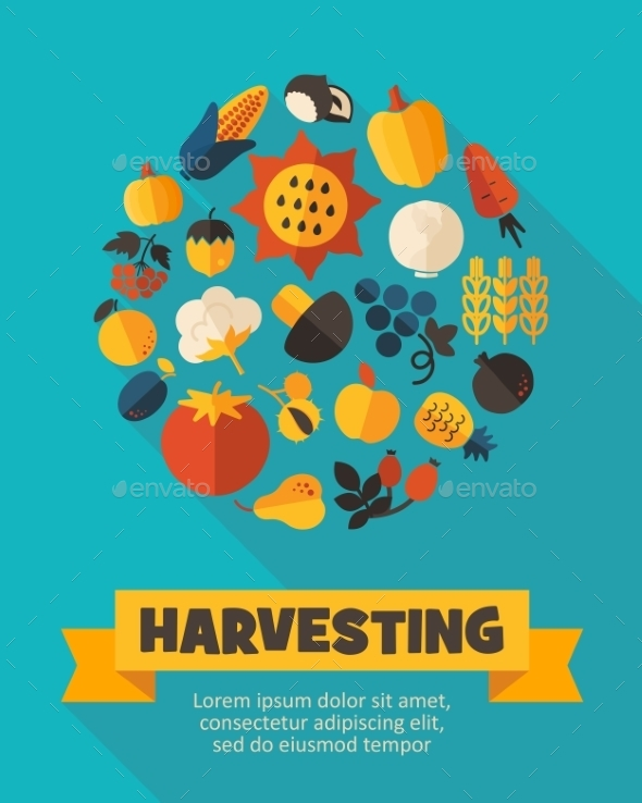 Harvest Fruits And Vegetable Poster
