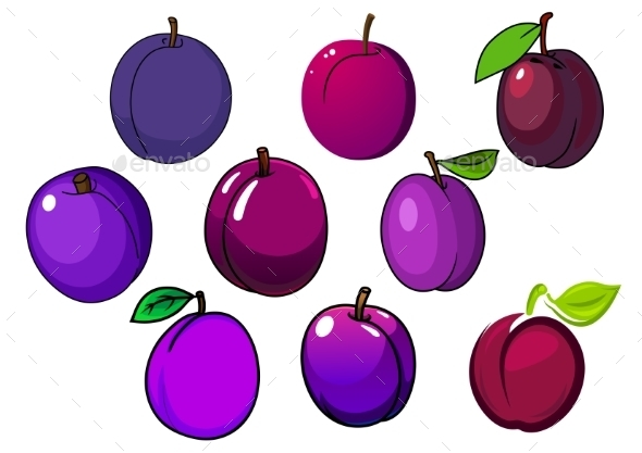 Fresh Isolated Purple And Violet Plum Fruits - Food Objects