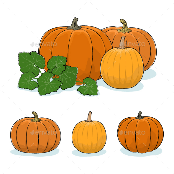Pumpkin Vegetable Edible Fruit