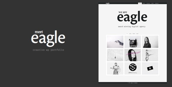 Eagle - Freelancer & Agency Layers WP Child Theme - Portfolio Creative