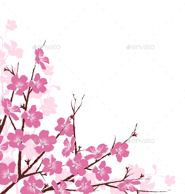 Branches with Pink Flowers Isolated on White - Flowers & Plants Nature