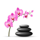 Stack of Spa Stones with Orchid Pink Flowers - GraphicRiver Item for Sale
