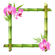 Green Bamboo Frame with Pink Orchid Flowers - GraphicRiver Item for Sale
