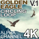 Golden Eagle Circling Ver 1 - VideoHive Item for Sale