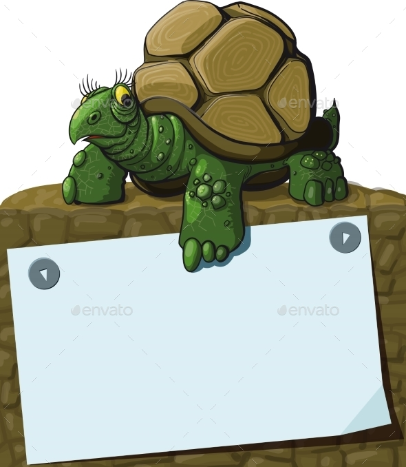 Intelligent Turtle - Animals Characters