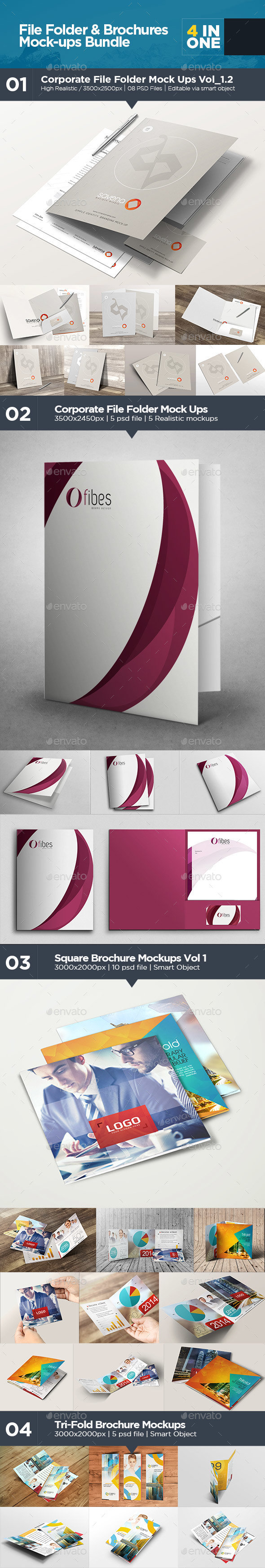 File Folder & Brochures Mock-ups Bundle