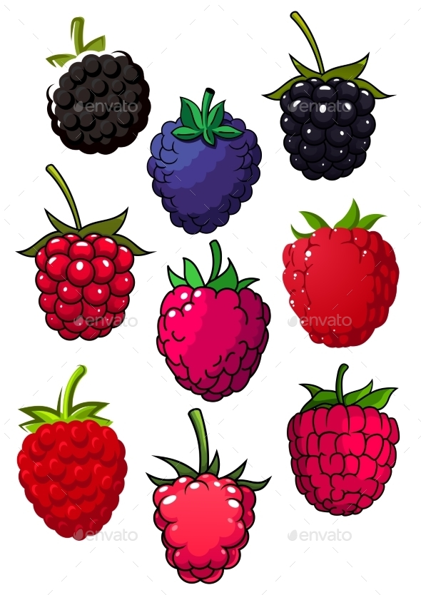 Red Raspberry And Blackberry Fruits - Food Objects