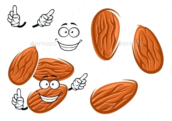 Cartoon Isolated Almond Seed Character - Food Objects
