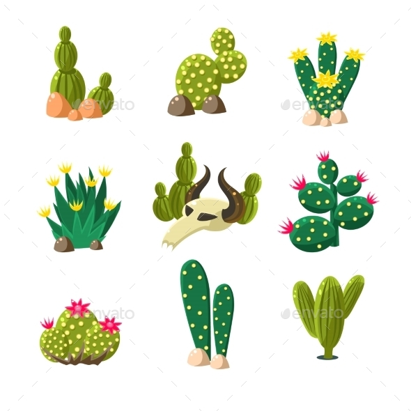 Cactus and Skull Icons