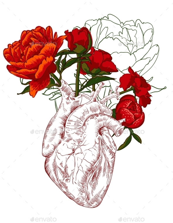 Drawing Human Heart with Flowers  - Decorative Symbols Decorative