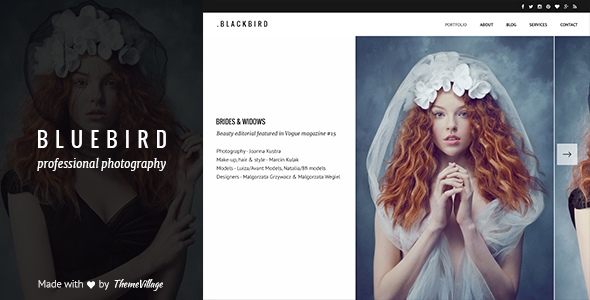 Bluebird – Design for Professional Photographers