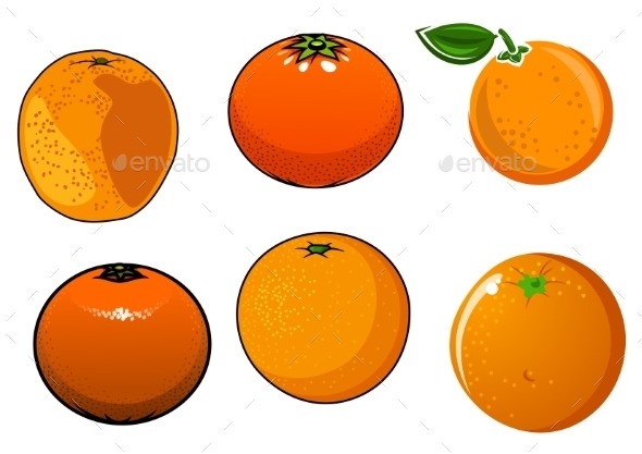 Isolated Ripe And Juicy Orange Fruits - Food Objects