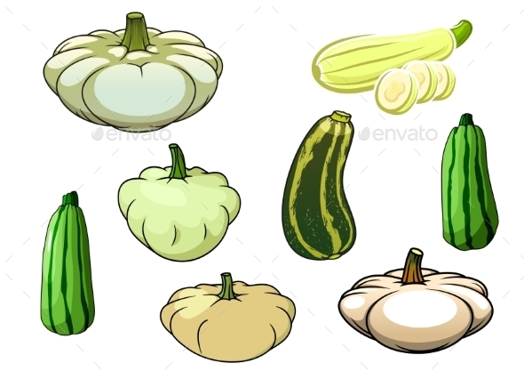 Pumpkin, Zucchini And Pattypan Squash - Food Objects