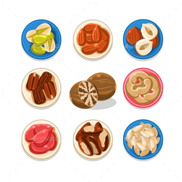 Nut Icon Set Vector Illustration - Food Objects