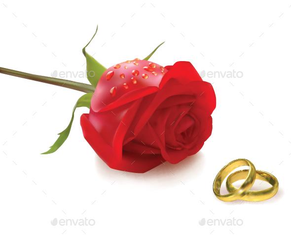 Rose and Wedding Rings - Weddings Seasons/Holidays